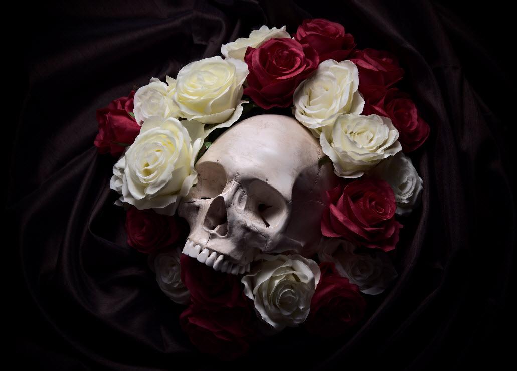 istocl_skullroses_web